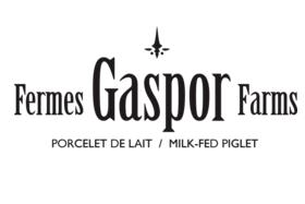Gaspor