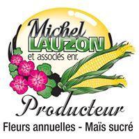 Michel Lauzon et associés