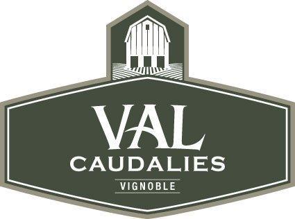 Vignoble Val Caudalies