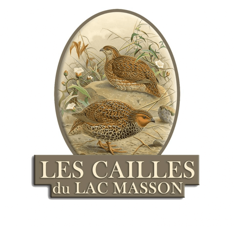 Les Cailles du Lac Masson